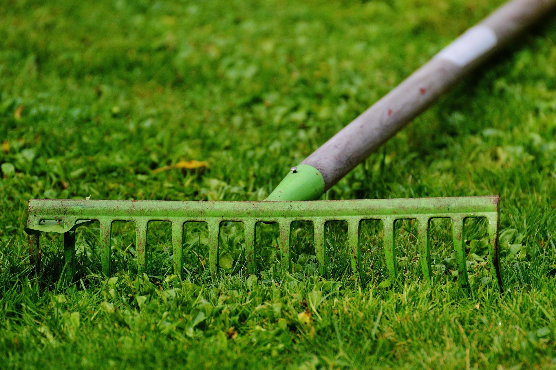 nabór ogródki działkowe wnioski