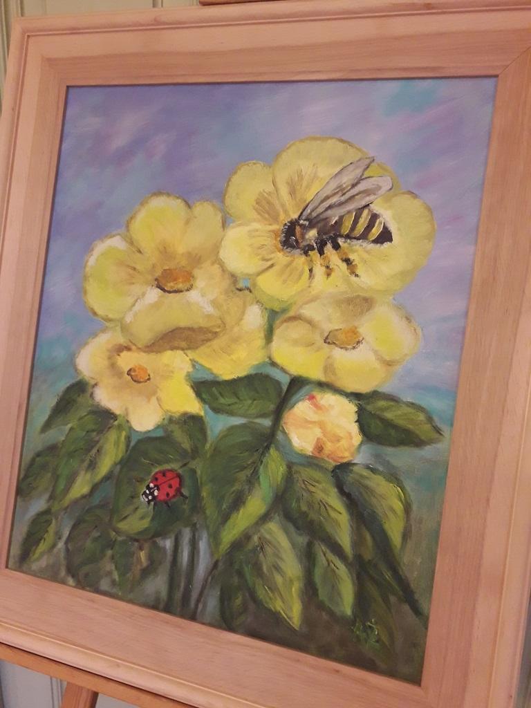 wystawa owady