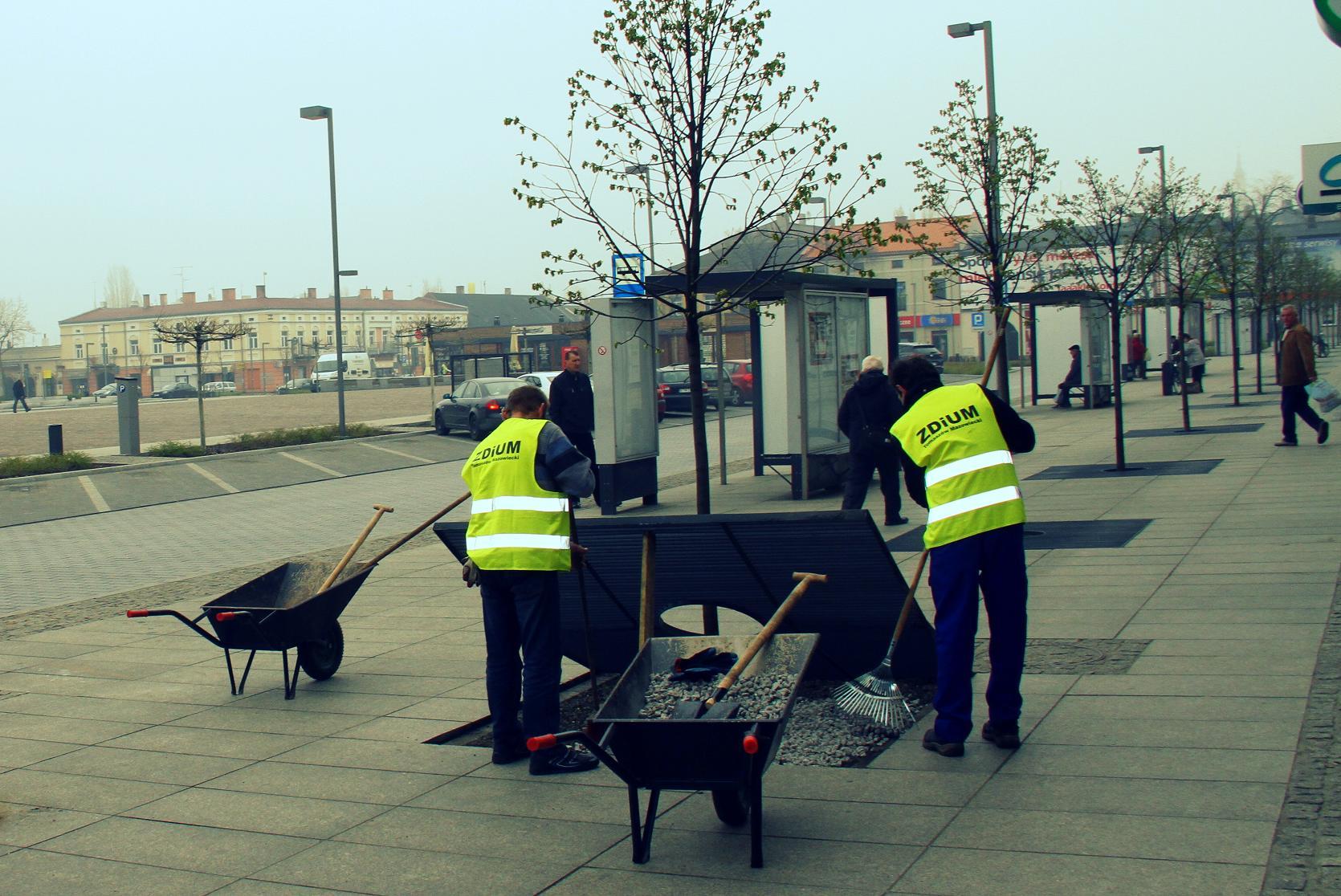 Wiosenne porządki w mieście. Plac Kościuszki nabiera kolorytu