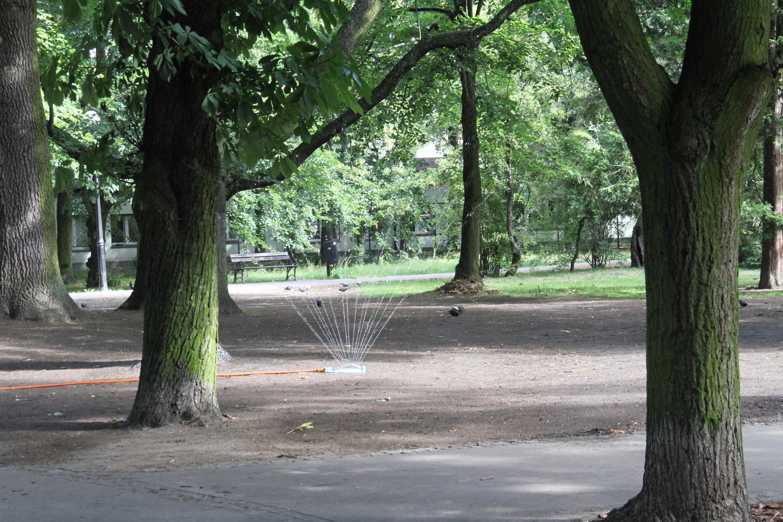 Park Rodego w trakcie prac
