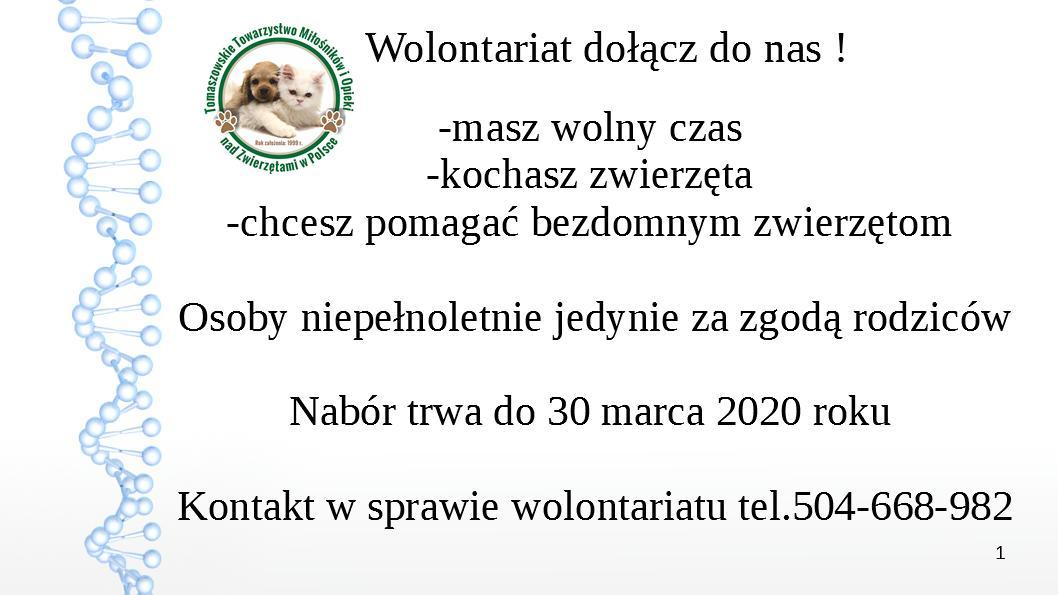 plakat wolontariat grudzien 2019 ttmioz