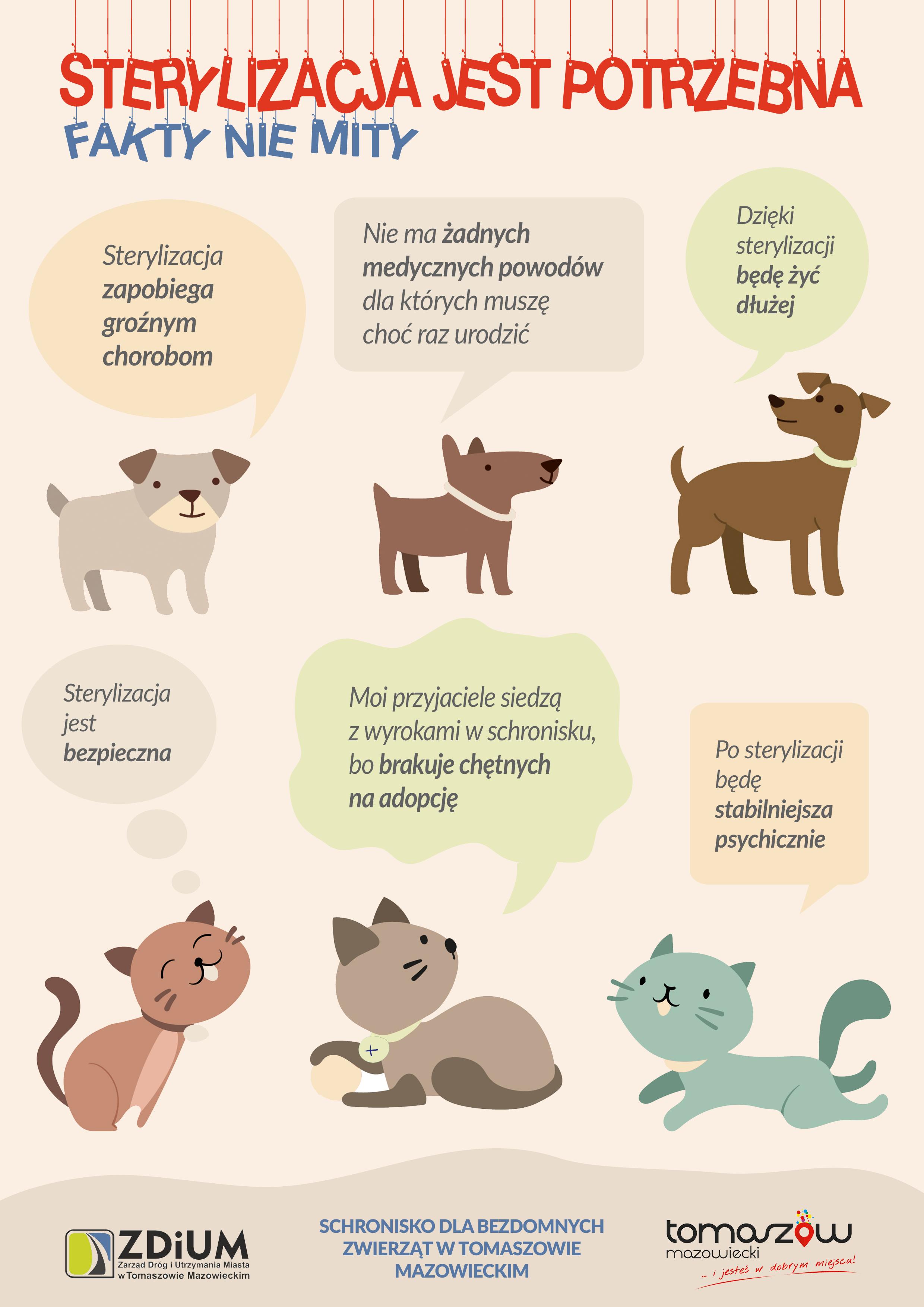 grafika różowa ze kotami i psami oraz informacjami o sterylizacji