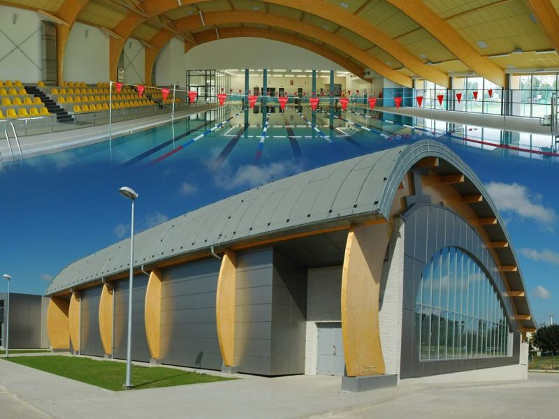 Na zdjęciu grafika z basenem