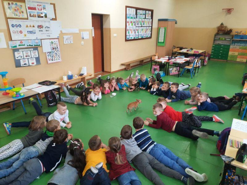 Na zdjęciu przedszkolaki, lezą na podłodze w kręgu i bawią się z psem