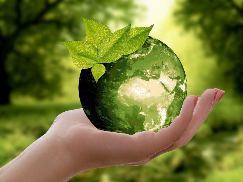 Na zdjęciu na doni zielona Ziemia przedstawiona graficznie jako jabłko
