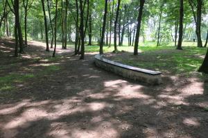 """Park """"Michałówek"""" zrewitalizowany"""