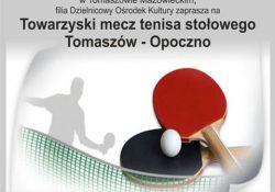 Towarzysko w tenisa stołowego