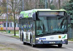 Komunikacja w okresie świąt Bożego Narodzenia i Nowego Roku ‒ zobacz, jak będą kursować autobusy MZK