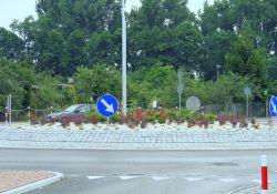 Miasto zadba o utrzymanie zieleni na powiatowych  rondach