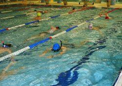 besen w wodzie pływacy