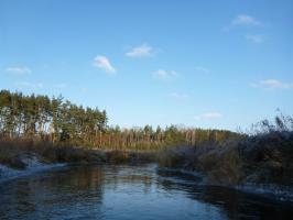 Noworoczne morsowanie i spływ kajakowy. AMBER rozpoczął nowy rok