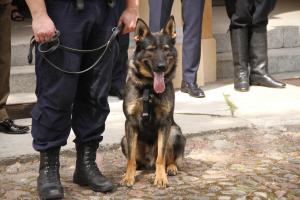 Policja świętowała 100. rocznicę powstania