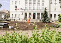Biało-czerwone kwiaty upiększą centrum miasta