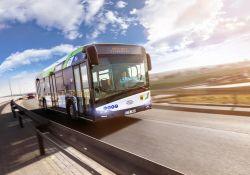 Kursowanie autobusów w okresie świątecznym