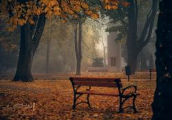 Ostrzeżenie przed mgłami